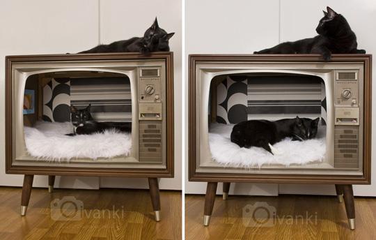 Modern Cat Beds Martine Roch Studio