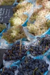 14 - grapes