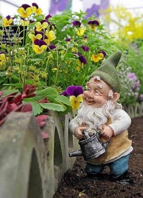 The gardener gnome