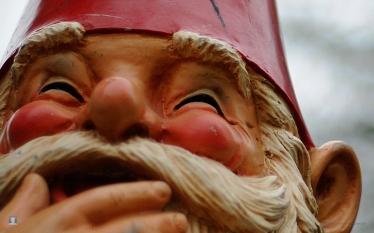 gnome close-up
