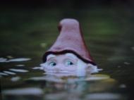 Swimming gnome