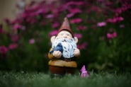 gnome and his bird