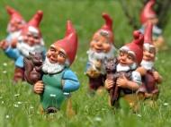 Happy gnomes