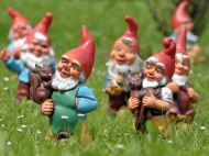 Happy gnomes